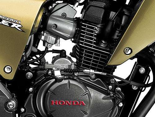 Honda CB Dazzler Engine View