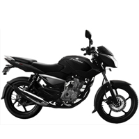 Bajaj Pulsar 135 Different Colour View 1