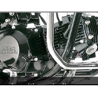 Hero Honda Splendor NXG engine view Picture