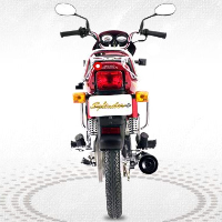 Hero Honda Splendor Plus Back View
