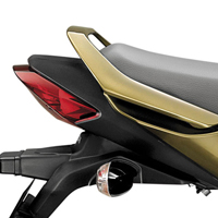 Honda CB Dazzler Back Light View