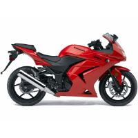 Kawasaki Ninja 250R Different Colour View 1