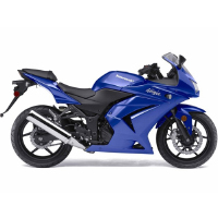 Kawasaki Ninja 250R Different Colour View 2