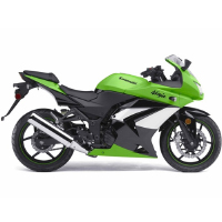 Kawasaki Ninja 250R Different Colour View 3