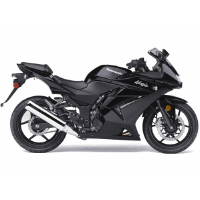 Kawasaki Ninja 250R Different Colour View 4