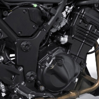 Kawasaki Ninja 250R Engine View