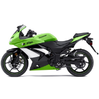 Kawasaki Ninja 250R Left View