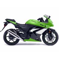 Kawasaki Ninja 250R Right View