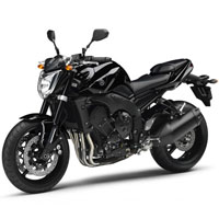 Yamaha FZ 1 Different Colour View 1