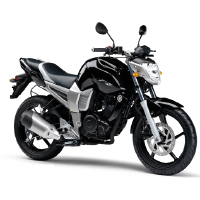 Yamaha FZ16 Different Colour View 1