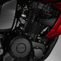 Yamaha FZ16 Engine View