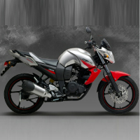 Yamaha FZS Right view Picture